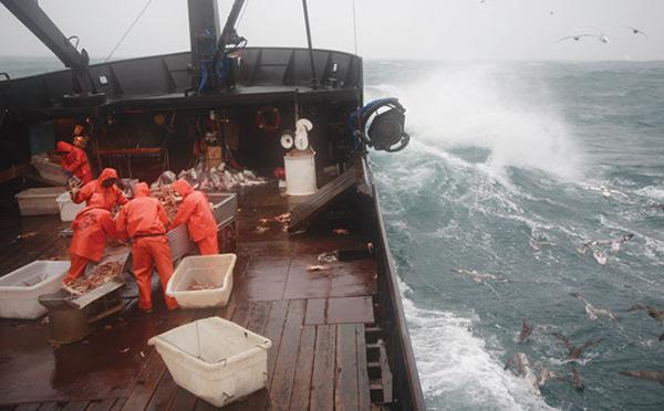 pescadores_alaska_01