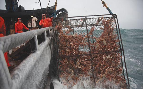 pescadores_alaska_02