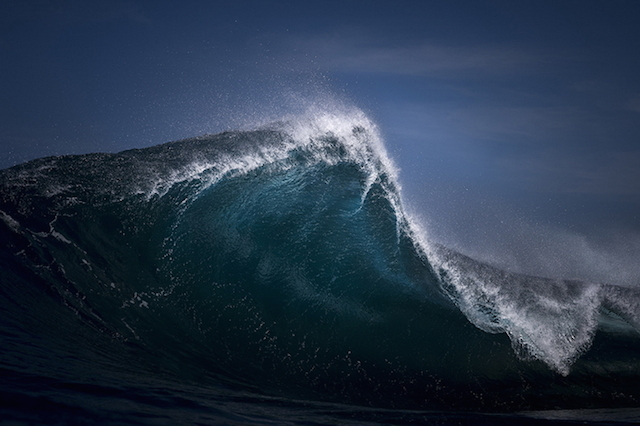 Fang - Ray Collins