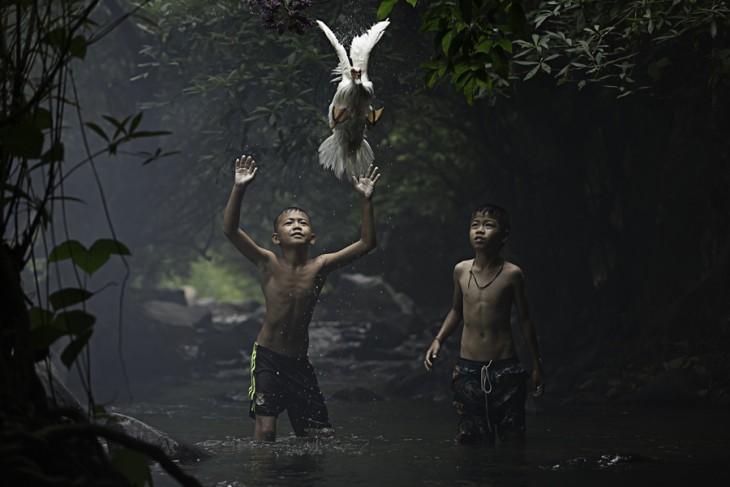 Fotografías-ganadoras-de-National-Geographic-2015-9-730x487