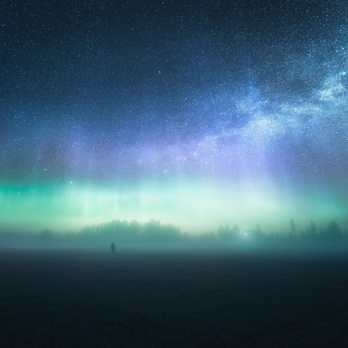 Mikko Lagerstedt - Invisible by day - 3