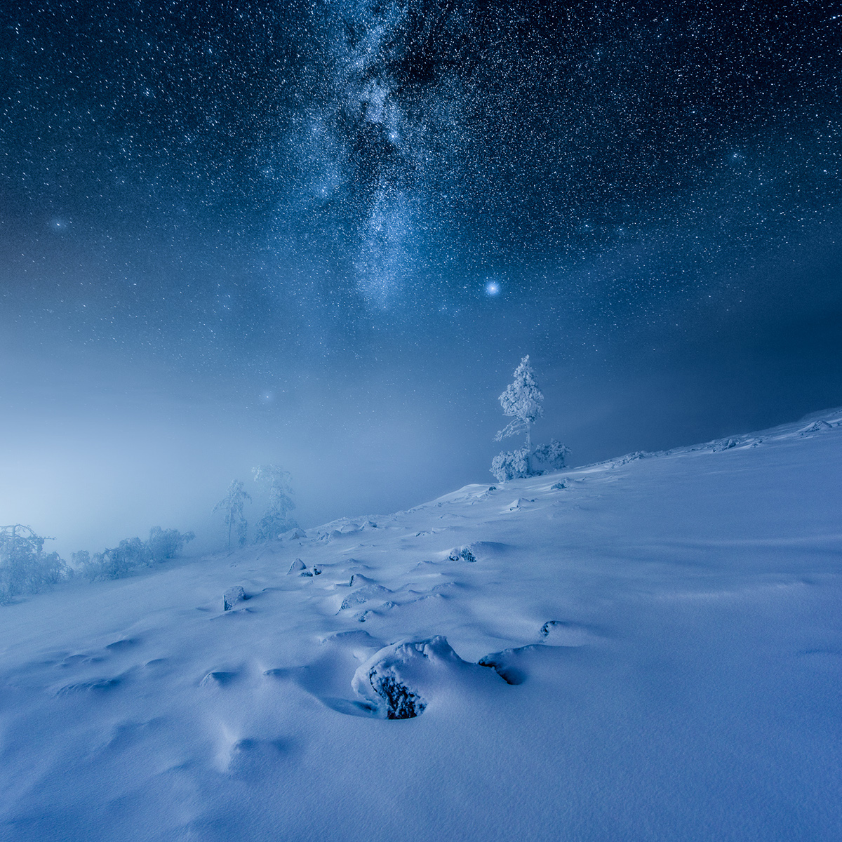 Mikko Lagerstedt - Invisible by day - 7